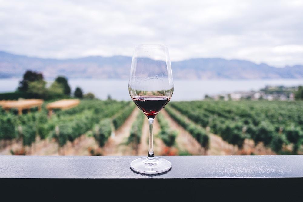 Wine & Wellness Tours
